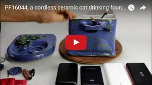 cordless pet fountain